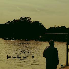 Hyde Park by Diego Aguiar - City,  Street & Park  City Parks ( london, hyde park, shadow, cityscape, park, londres )