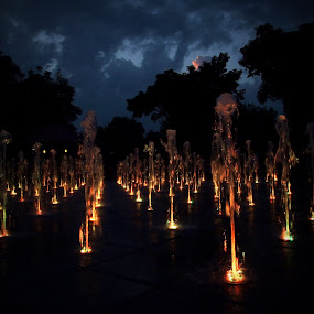by Alex D.  Veriga - City,  Street & Park  Fountains