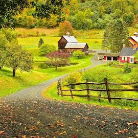 Sleepy Hollow Farm by Dan Pham - Buildings & Architecture Homes ( farm, fall, read, house, country side )