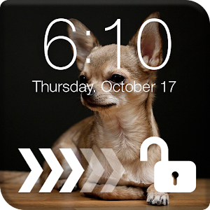 Download Cute Chihuahua Screen Lock For PC Windows and Mac