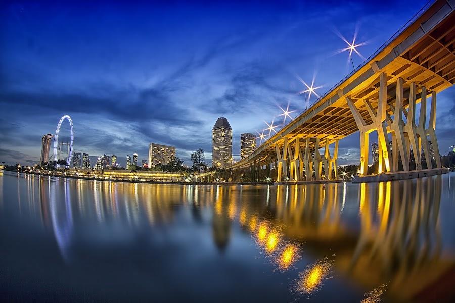 GOLDEN SHEARES BRIDGE by Y.Z Lim - Landscapes Waterscapes ( pwcbridge )