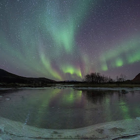 Aurora over iced river by Benny Høynes - Landscapes Waterscapes ( winter, ice, aurora borealis, northern lights, river, norway )