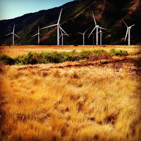 Wind Mills by Bryan Rasmussen - Instagram & Mobile iPhone