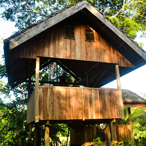 Tree House by Gi Masangya - Buildings & Architecture Homes ( aklan, nikon photography, nikon d3100, 2013, nature, tree, tree house, outdoor, architecture, nikon, philippines )