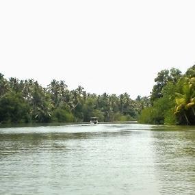 Back water in Kerala by Soumaya Karmakar - Landscapes Travel
