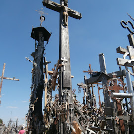Hill of Crosses, Lithuania by Gyan Fernando - Buildings & Architecture Places of Worship ( baltics, siauliai, christian, 2015, gyan fernando, hill of crosses, crosses, religious imagery, travel, lithuania )