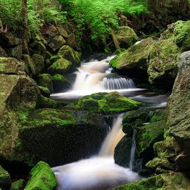 by Dagmar Germaničová - Uncategorized All Uncategorized ( water, brook )