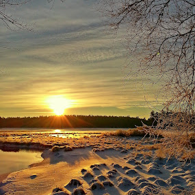 winter sunrise by David Pratt - Landscapes Sunsets & Sunrises ( winter, snow, sunrise, landscape, sunlight )