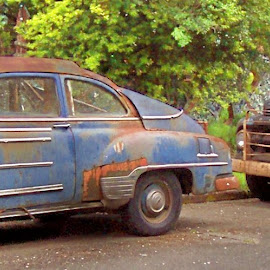 DUET OF RUST by William Thielen - Transportation Automobiles ( orange, old, patina, rat rod potential, truck, sedan, blue, worn, chevrolet, rust, ford, wear, chevy, black, classics )