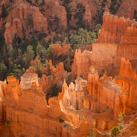 Hoodoos by Jeff Fahrenbruch - Landscapes Mountains & Hills ( bryce canyon national park inspiration point, national park, bryce canyon national park, utah )