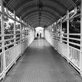 permahatahijau bridge by Ahmad Sumawijaya - City,  Street & Park  City Parks ( black and white, street, jakarta, bridge, street photography )
