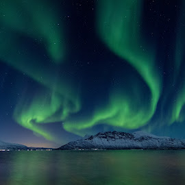 Northern lights in the north. by Ronny Olsen - Landscapes Mountains & Hills ( canon, nofilter, northern lights, tokina, norway )