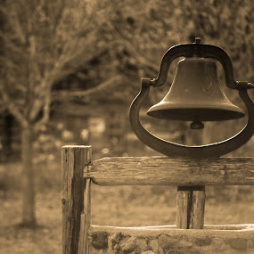 School Bell by Kellie Prowse - Artistic Objects Antiques ( bell, school, midland, house, school bell, mi, chippewa nature center )