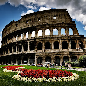 Colosseum, Rome by Peter Greenhalgh - Travel Locations Landmarks ( clouds, roma, coliseum, colosseum, blue sky, grass, green, red flowers, amphitheatre, italy, amphitheatrum flavium )