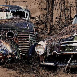 Friends Till The End by Jeffrey Lorber - Transportation Automobiles ( old car city, rusted cars, lorberphoto, lorber, rust, jeffrey lorber, rusted autos, desoto,  )