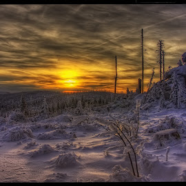 sunrise on Hochstein by Petr Klingr - Landscapes Sunsets & Sunrises ( clouds, hdr, trees, sunrise, rocks, sun )