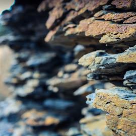 Shale by TJ Morrison - Nature Up Close Rock & Stone ( tjm, shale, art, stone, rock )