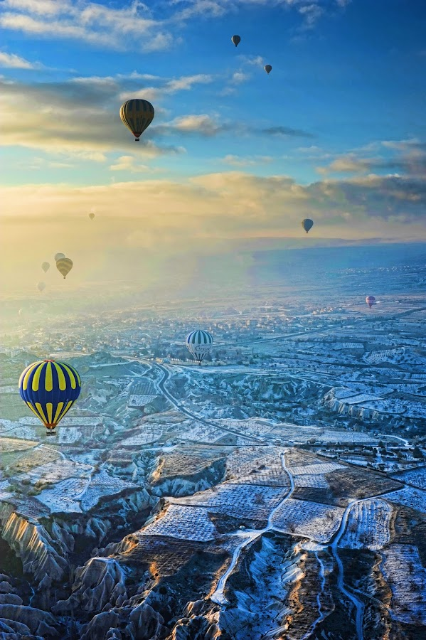 Morning baloons by Stacy Benedicta - Travel Locations Air Travel