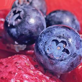 Berries closup by Michael Karakinos - Food & Drink Fruits & Vegetables