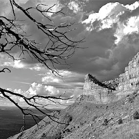 Mesa Verde by Bryan Lowcay - Black & White Landscapes (  )