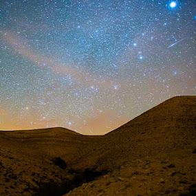 Falling star by Idan Presser - Landscapes Starscapes ( friends, desert, negev, idan presser(c), trek, hike )