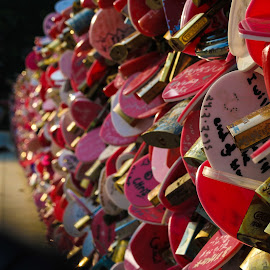 Love Bridge by Juz AnDy - Artistic Objects Other Objects ( love, unlocked, love lock, penang hill, penang, lock, locked, love bridge, bridge )