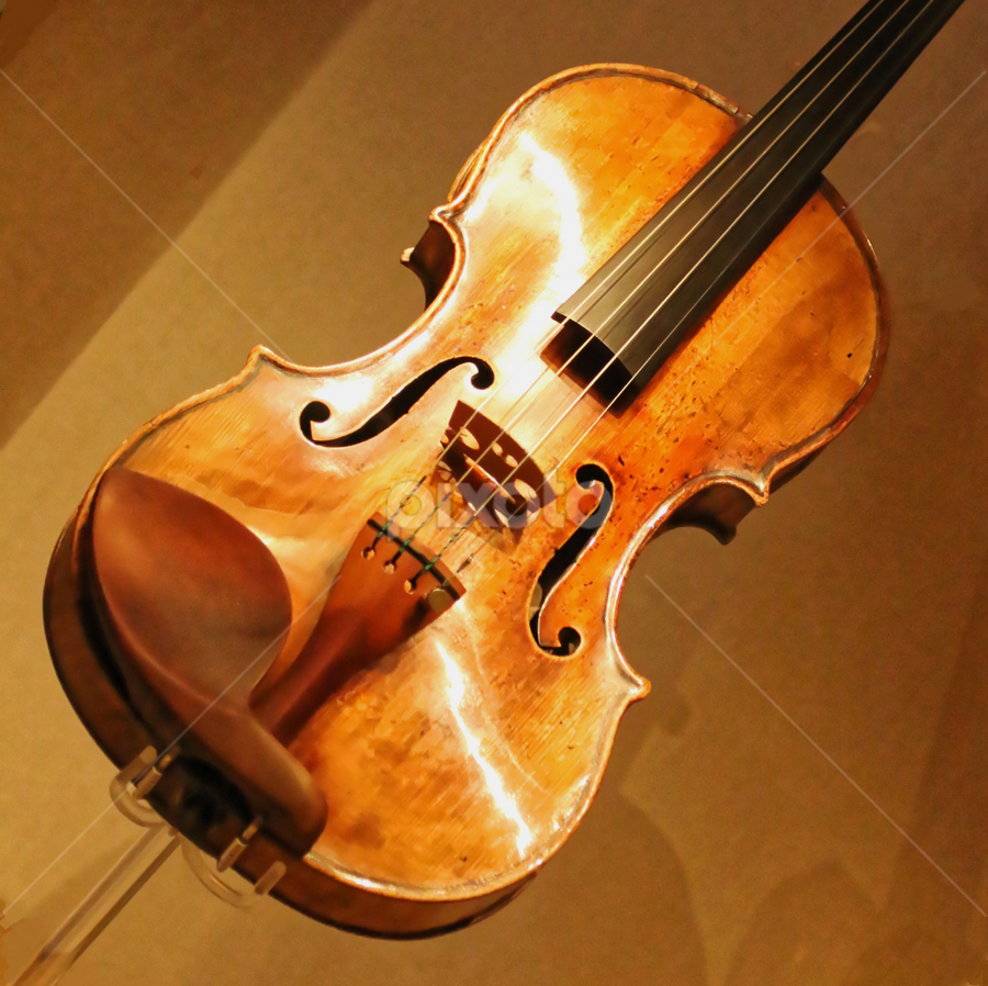 Violin 99 by Raphael RaCcoon - Artistic Objects Antiques