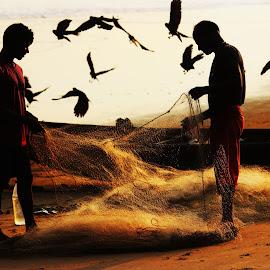 lets go... by Satasat Dg - People Professional People ( silhouette, sea, beach, net, boat, people, birds )