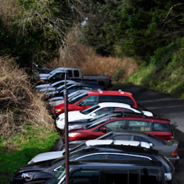 Parking Uphill by Janet Young- Abeyta - Transportation Automobiles ( uphill, in a row, cars, parked )