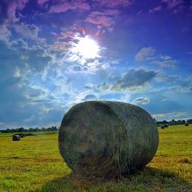 Hey Bales by Marco Bertamé - Landscapes Prairies, Meadows & Fields ( clouds, hey, blue, bale, green, sunset, sun )