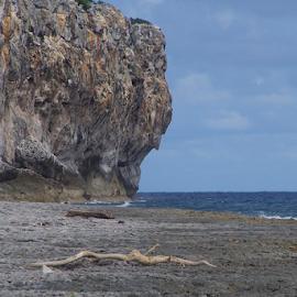 Cayman Cliffs by Janet Gilmour-Baker - Landscapes Beaches ( bluffs, cliffs, rocky beach, cayman islands, ocean, beach, landscape, island )