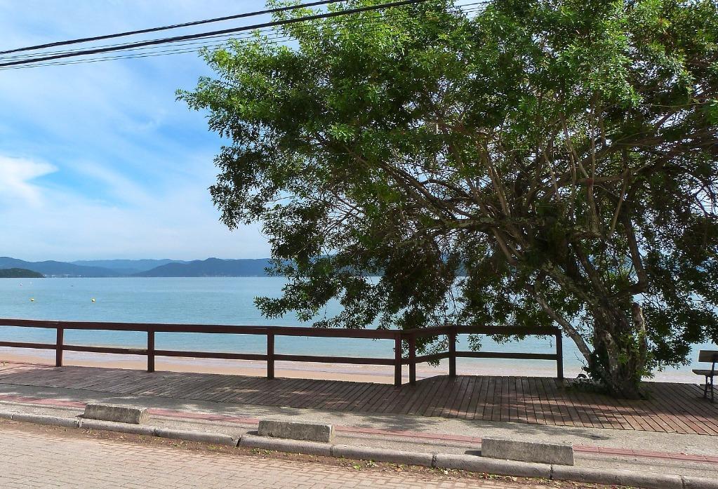 Terreno, Sambaqui, Florianópolis (TE0287) - Foto 13