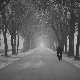 morning trip by Yuriy Podoba - Black & White Street & Candid ( bycicle, bw, trees, road, mist )