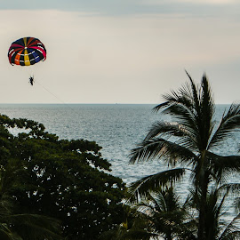 Parachute by Sandy Ling - Sports & Fitness Other Sports
