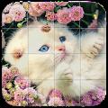 Tile Puzzle Cats APK for Kindle Fire