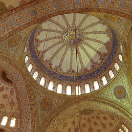 The Blue Mosque by Randi Hodson - Buildings & Architecture Places of Worship ( mosque, istanbul,  )