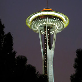 by Bill Foreman - Buildings & Architecture Other Exteriors ( space needle, seattle )