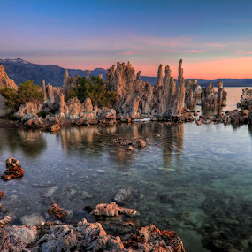 Mono Lake Tufa by Bud Walley - Landscapes Waterscapes