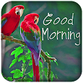 App Good Morning messages images APK for Kindle