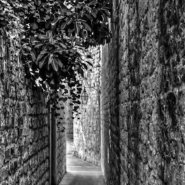 Exit by Jose Maria Vidal Sanz - Black & White Buildings & Architecture ( black and white, exit, street photography )