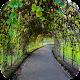 Escape Games - Garden