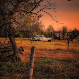 In The Field by Scott Hryciuk - Landscapes Prairies, Meadows & Fields ( farm, car, field, tree, sunset, equipment, prairie )