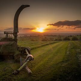 by David Ferris - Landscapes Prairies, Meadows & Fields