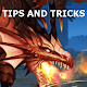 Guide For Dragon Project 1.0