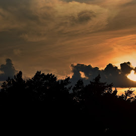 Sunset by Jonas Lennartsson - Landscapes Cloud Formations ( clouds, sunset, summertime, evening, tree tops,  )