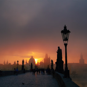 Praha Skyline by Jimmy Kohar - City,  Street & Park  Skylines