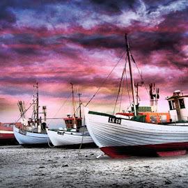 Danish fishing boats by Stephen Davis - Transportation Boats