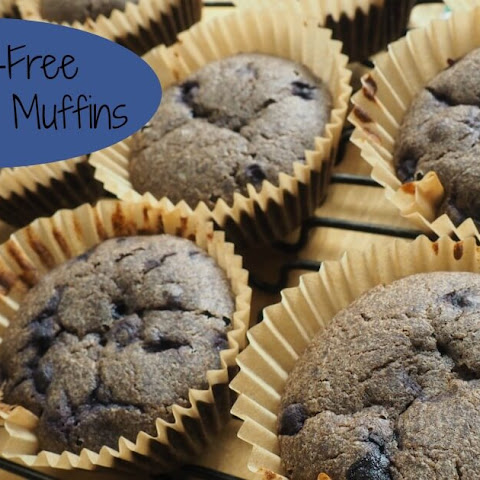Soaked Gluten Free Blueberry Muffins