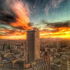 Through the window  by Rachel Levin - Landscapes Sunsets & Sunrises ( sky, skyscraper, window, sunset, glare )