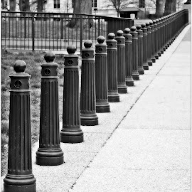 Barriers by Denny Paul - Abstract Patterns ( barriers, black and white, street, city, sidewalk )